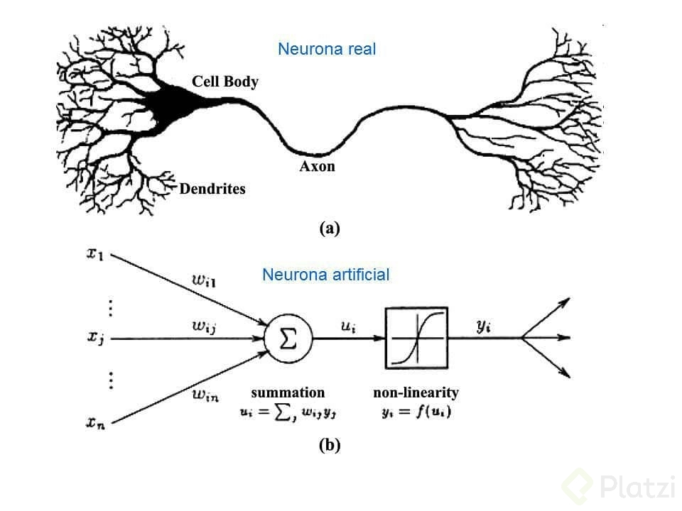 arquitectura-red-neuronal.png
