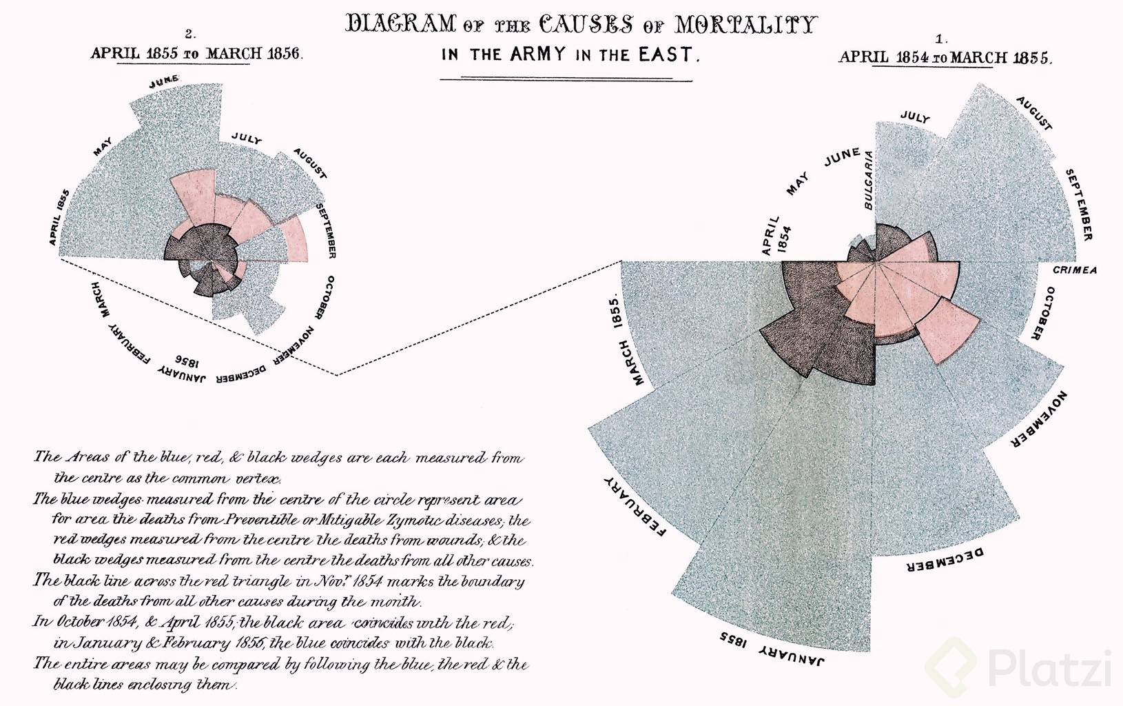 el diagrama de la rosa